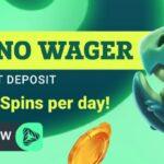 green spin no wager